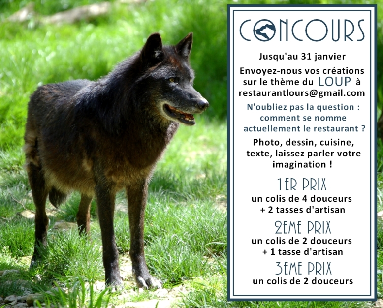 concours loup